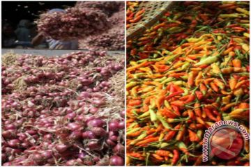 Harga cabai rawit dan bawang normal