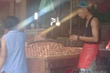 Harga telur ayam ras di Ambon Rp2.000/butir