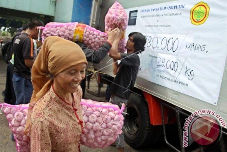 Distan upayakan kecamatan Oba jadi penghasil bawang