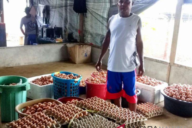 GBS produksi telur ayam ras segar lokal