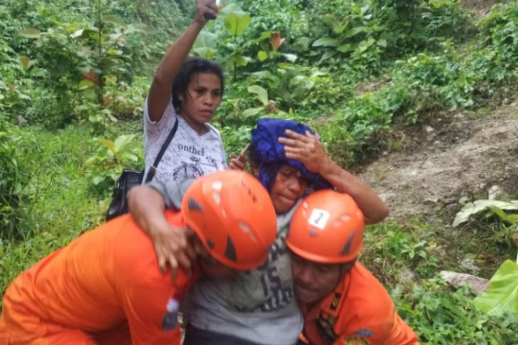 Basarnas evakuasi seorang warga tertimpa pohon tumbang