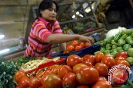 Harga Sayur di Pangkalpinang Bertahan Tinggi