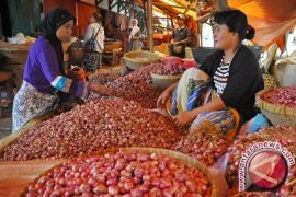 Harga bawang merah di Pangkalpinang Rp36 ribu