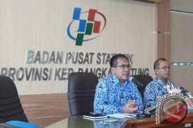 BPS: Produksi padi petani Bangka Belitung 11.619 ton