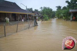 BPS: 306 desa di Babel terkena bencana