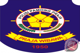 Satpol PP Kabupaten Bangka Tengah Sisir Kawasan Tambang Timah di Koba
