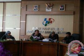 BPS: Ekonomi Bangka Belitung didominasi tambang timah