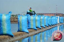 Pemerintah siap mengimpor 3,7 juta ton garam industri