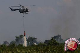 Sudah 21,67 Juta Ton Air Disiram dari Udara Untuk Atasi Kebakaran Riau