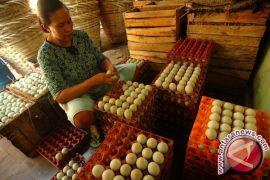 Harga Telur Asin di Pangkalpinang Naik Akibat Garam Mahal
