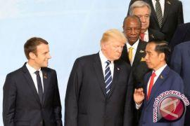 Presiden Jokowi Diminta Pelopori Diplomasi Kemerdekaan Palestina