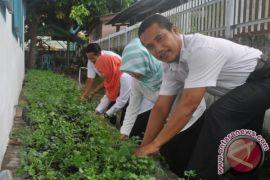 Pemerintah Bangka ajak masyarakat terapkan pangan lestari