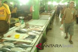 PPN Sungailiat dorong nelayan manfaatkan TPI higienis