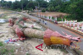 Naga sepanjang 35 meter meriahkan Imlek di Bangka