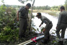 Satpol PP Kabupaten Bangka menertibkan tambang ilegal