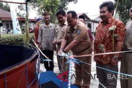 Pemkab dorong setiap rumah punya kolam bioflok