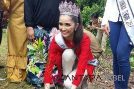 Puteri Indonesia 2018 tanam bibit pelawan di Namang (Video)