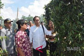 Babel's pepper is of best quality in the world: KEIN-RI