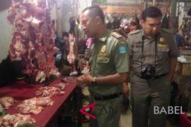 Satpol PP Bangka periksa daging dan paru-paru sapi