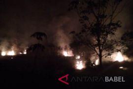 Dua hektare hutan di Desa Sadai Bangka Selatan terbakar