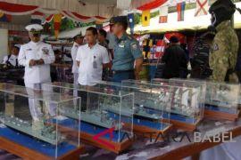 Lanal Babel pamerkan alutsista di Pelabuhan Pangkalbalam
