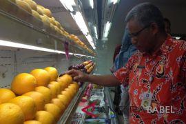 Jejaring pangan Bangka Belitung sidak pasar buah modern