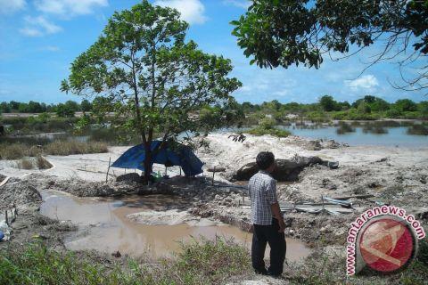 Pokdarwis Deniang kembangkan agrowisata tambang timah