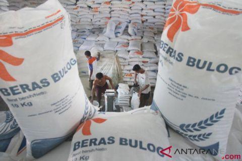 Buwas: Jangan ngarang soal data penyerapan beras