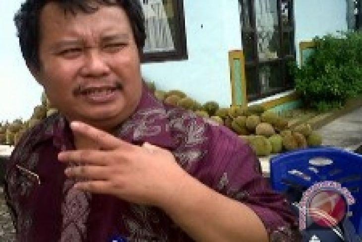 Durian Lokal Bangka Barat Diminati Konsumen Antara News Bangka