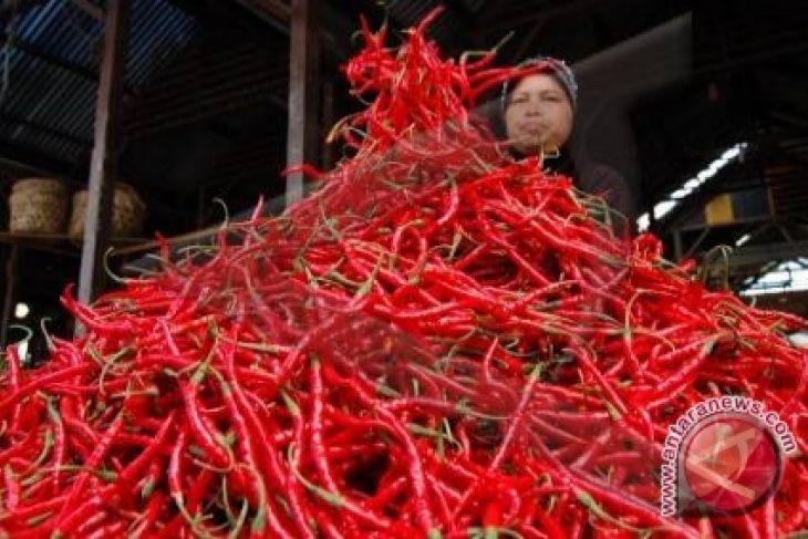 Harga cabai merah di Pangkalpinang turun