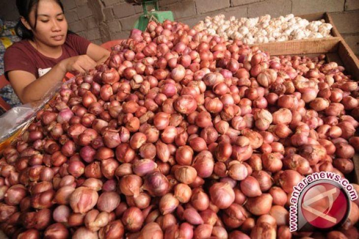 Harga Bawang Merah di Pangkalpinang Turun Jadi Rp35.000