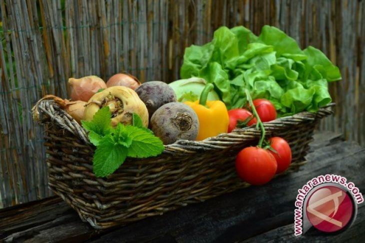 Sayuran-Buah Cegah Kelainan Bawaan Pada Bayi