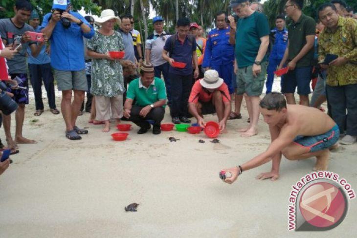 Yachter Lepas Tukik di Pulau Ketawai