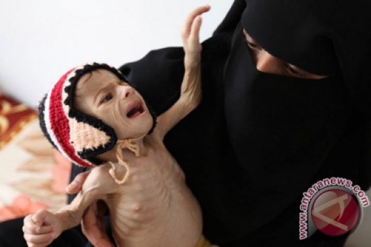 Pejabat PBB prihatin mengenai impor makanan ke Yaman