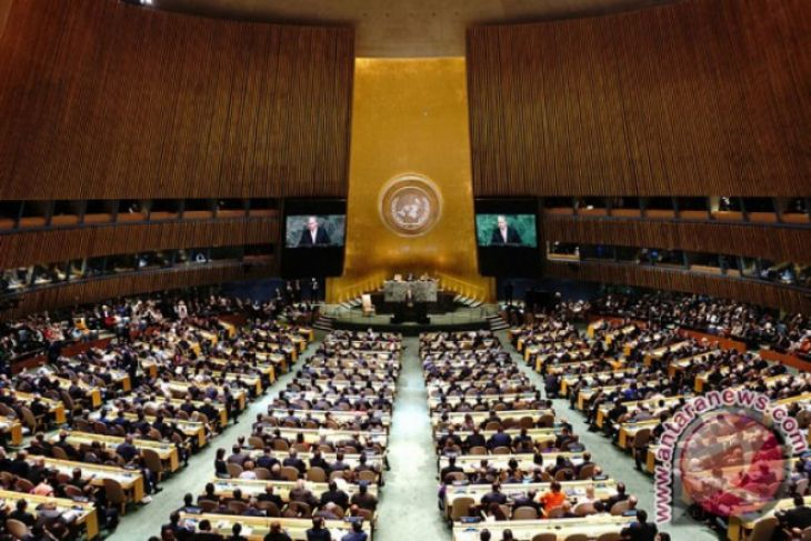Neve Te Aroha, bayi pertama hadiri Sidang PBB