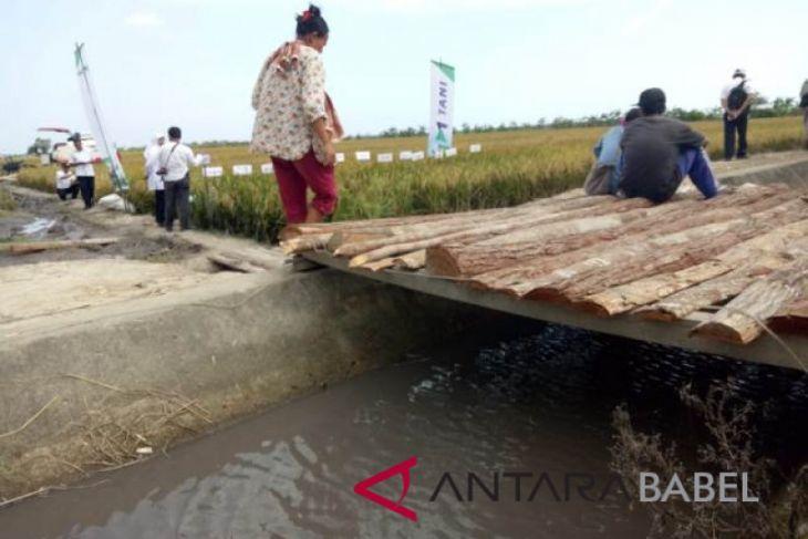 Warga Desa Rias keluhkan limbah tambang cemari sawah