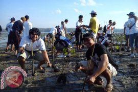Dinas Perikanan Denpasar Ajak Siswa Tanam Mangrove