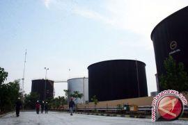Harga minyak naik didorong kebangkitan pasar saham