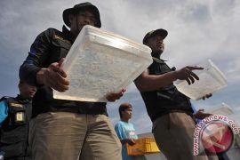 Polda Bali gagalkan penyelundupan lobster Rp3,7 miliar