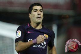 Suarez absen bela Barcelona selama dua minggu obati  lututnya