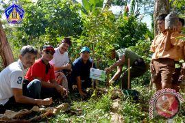 Pemprov Bali Ajak Masyarakat Tanam Pohon
