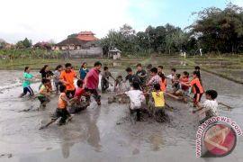 Denpasar develops subak as new tourist attraction