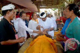 Wagub Bali Hadiri Ritual Potong Gigi Massal