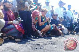 200 Tukik Dilepas di Pantai Masceti-Gianyar (Video)