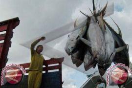 Kadis Perikanan: Restoran Badung Konsumsi 45 Ton Ikan