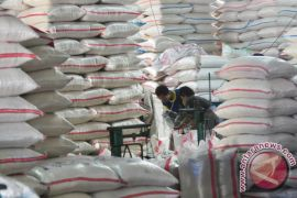 Govt opens rice import option