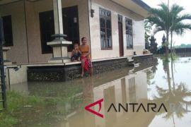 Banjir Dusun Samblong-Jembrana sudah terjadi puluhan tahun