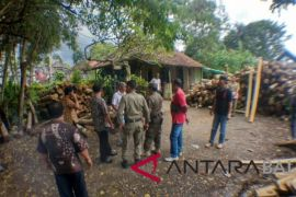 Satpol PP Jembrana segel usaha pengolahan kayu