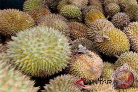 Kandungan gizi dalam durian