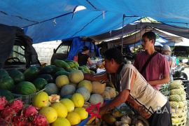 Bali jadi tempat potensial pemasaran buah-buahan